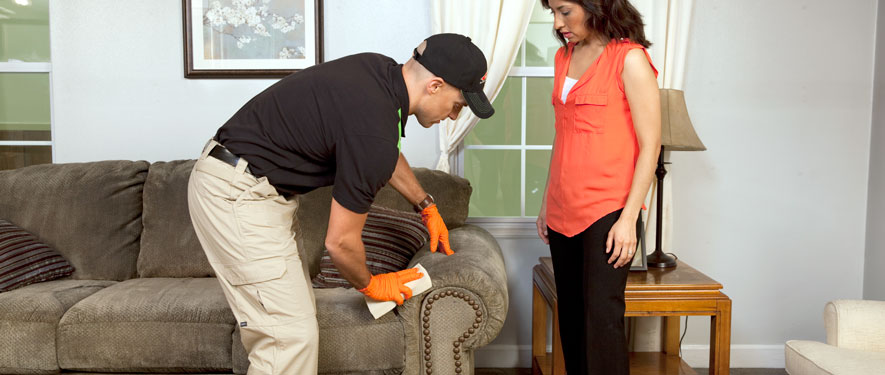 Glenwood Springs, CO carpet upholstery cleaning
