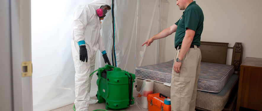 Glenwood Springs, CO mold removal process